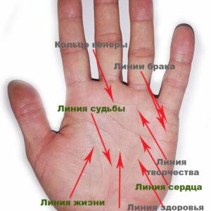 Основные и второстепенные линии рук